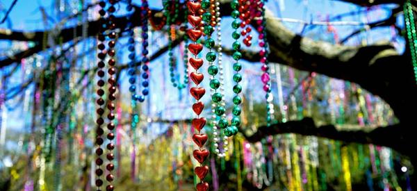 Mardi Gras Beads hang from a tree.